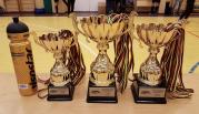 Panevėžio apskrityje finišavo futsal mėgėjų pirmenybės